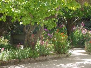 Stevenson House gardens 078