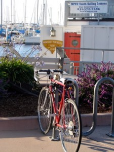 Bike rack by yacht club