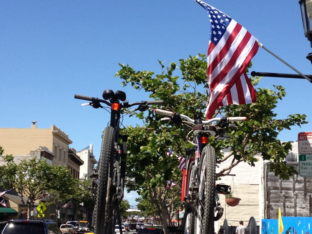 Freedom - bike rack atop car