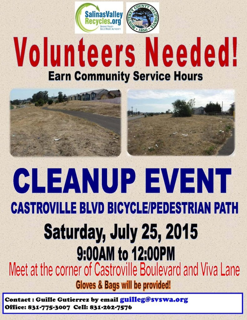 July 2015 Castroville cleanup