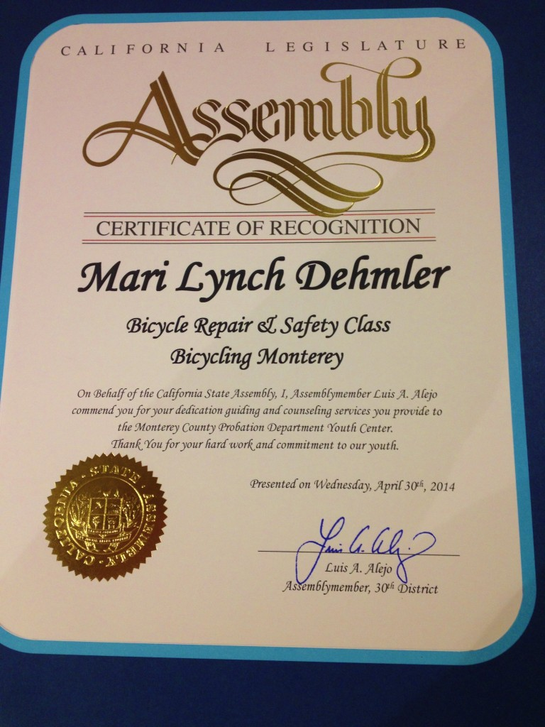 Mari Lynch April 2014 CA Assembly