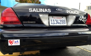 Salinas PD 3 Ft for Safety - 4107